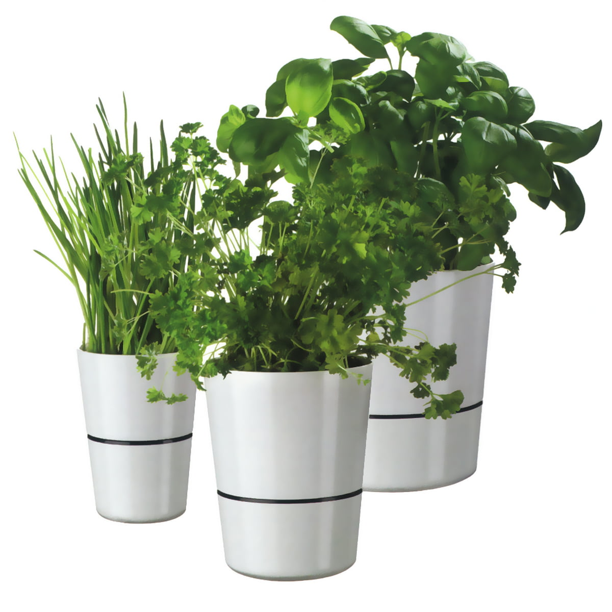 hydro herb container rosti mepal shop. Black Bedroom Furniture Sets. Home Design Ideas