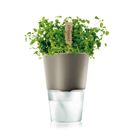 self-watering Flower Pot