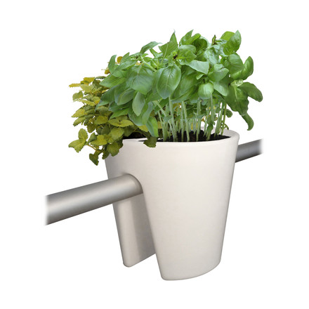 rephorm - Steckling Plants Container - white