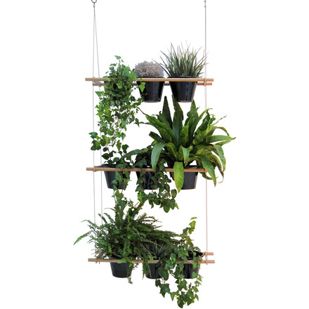 Edition Compagnie - Etcetera Planting System (set of 3), black