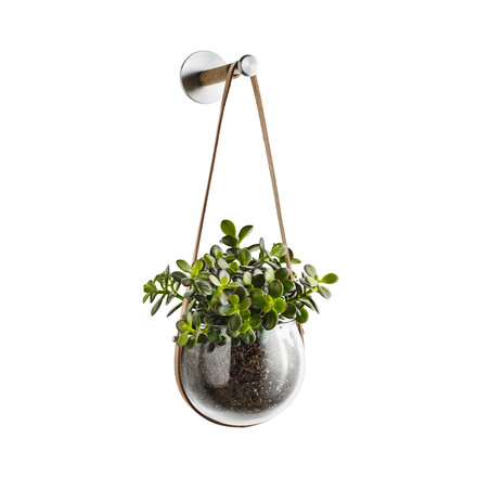 Design With Light Hanging Bowl 14 cm with Wall Hook by Holmegaard with green plant