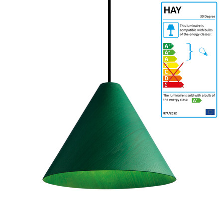 The 30 Degree pendant lamp in green by wrong.london