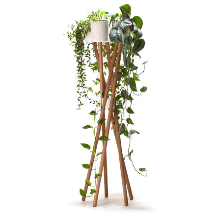 High Garden by Urbanature in oak with white cachepot
