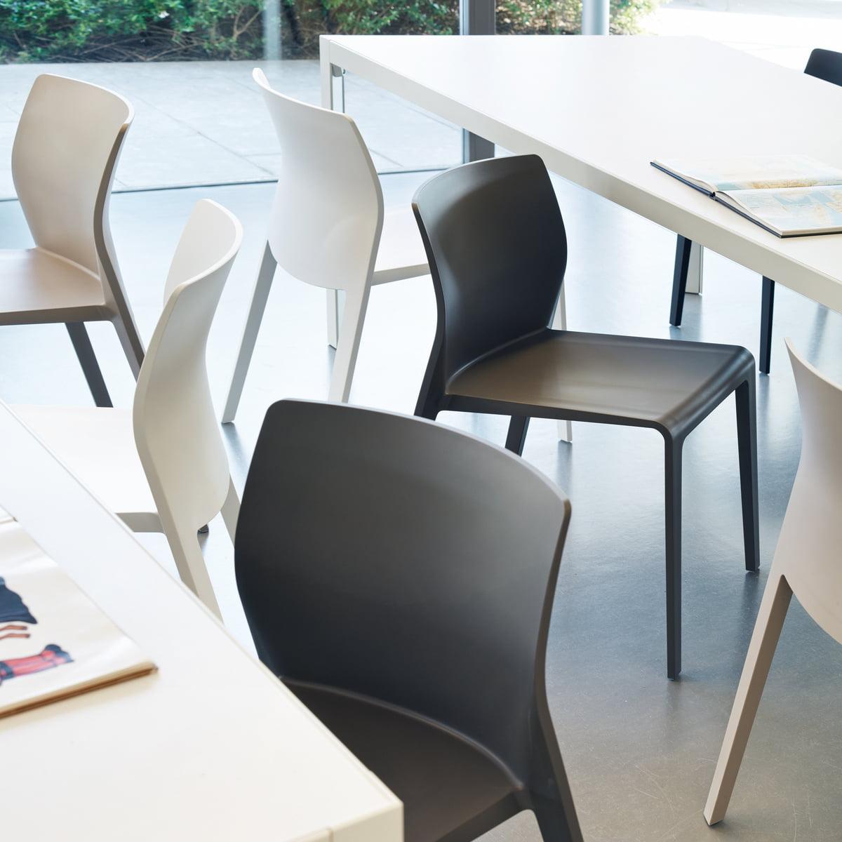 juno chair by arper in our interior design shop - arper  juno chair