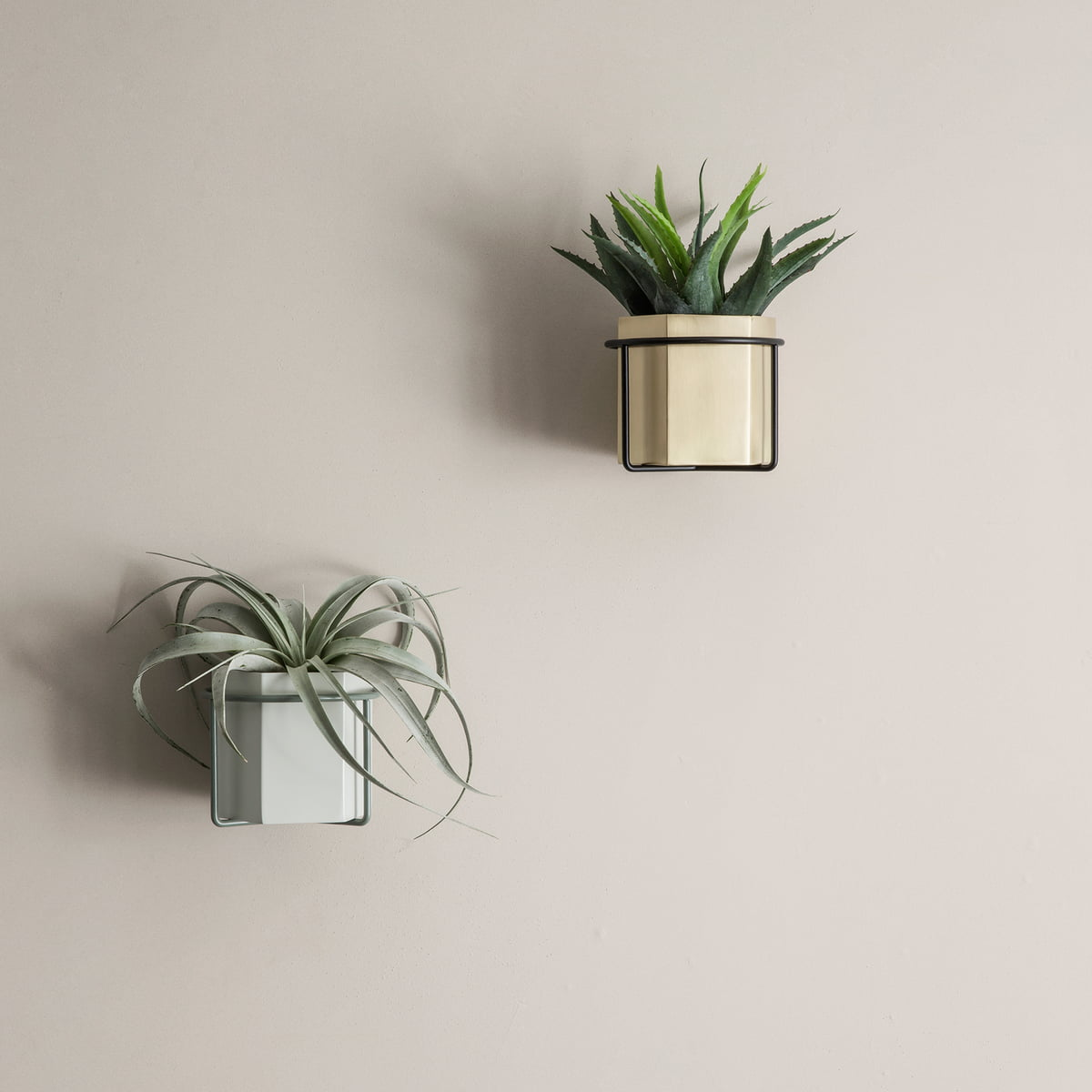 wall plant holder by ferm living in our shop. Black Bedroom Furniture Sets. Home Design Ideas
