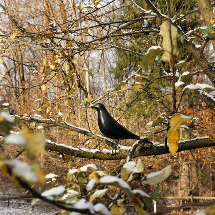 The wooden Eames House Bird by Vitra surrounded by nature
