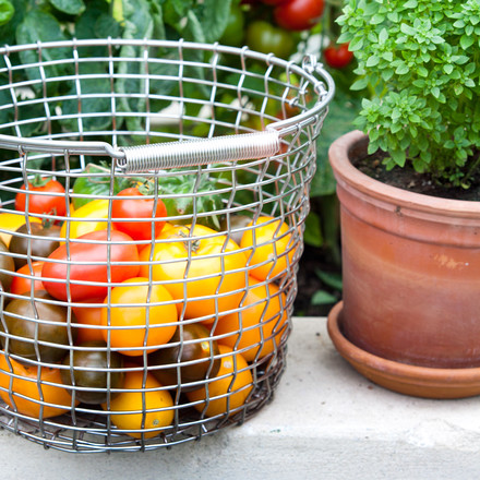 Korbo - Bucket 24, Ambience image, Tomatoes in basket