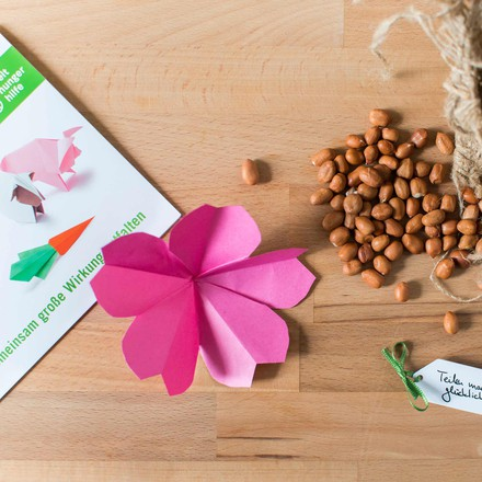 Donation German Agro Action Welthungerhilfe: Seeds
