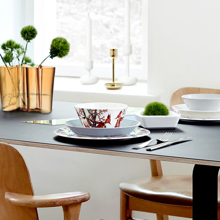 Iittala - Tanssi dishes