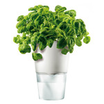 Eva Solo - Herb Pot Ø 11 cm, white