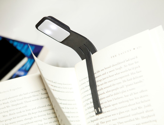 Book accessories: Reading lamps, book ends and more!