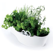 Royal VKB - Herb Garden