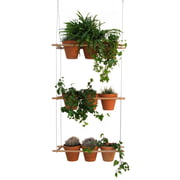 Edition Compagnie - Etcetera Planting System