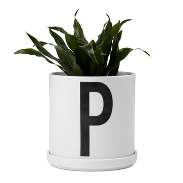 Design Letters - AJ Porcelain Plant Pot, with plant