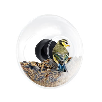 Eva Solo - Window Bird Feeder, with birdseed and bird