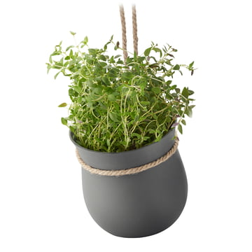 Rig-Tig by Stelton - Grow-It Herb Pot, grey