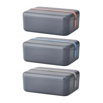 Rig-Tig by Stelton - Keep-it Cool lunchbox, blue/gray/pink silicone band