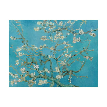 Almond Blossom (Vincent van Gogh) by IXXI