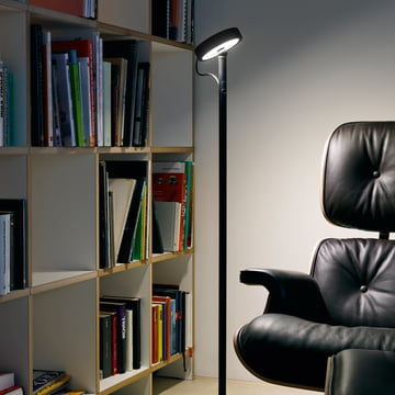 Belux - U-Turn floor lamp, LED, black, black