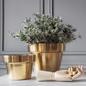 Skultuna - Flower Pots brass polished, small and medium with flowers